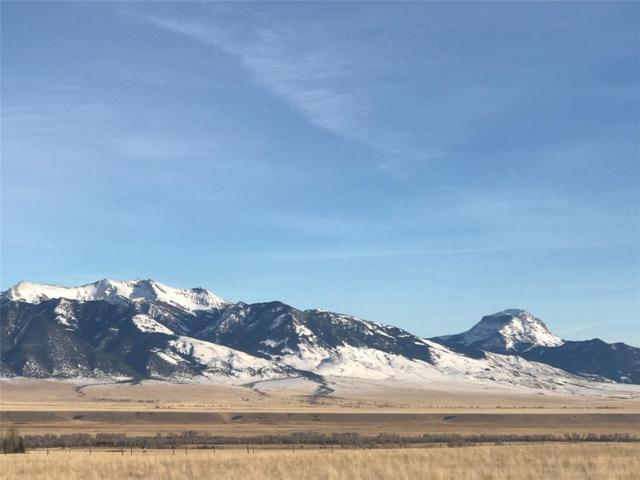 273 Virginia City Ranches, Ennis, MT 59729 (MLS #329573) :: Black Diamond Montana