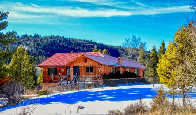 1359 Olson Gulch, Anaconda, MT 59711 (MLS #329694) :: Black Diamond Montana