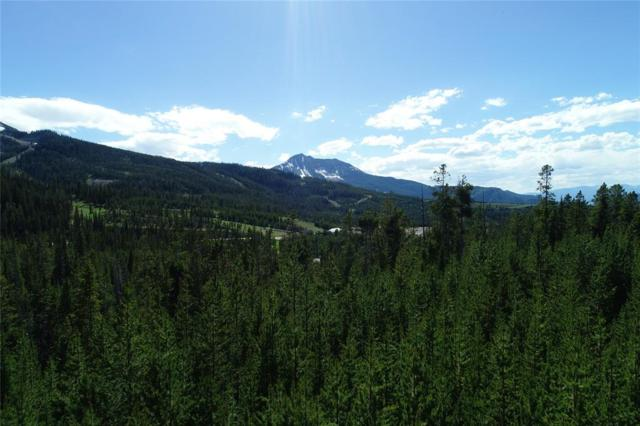 TBD Wildrye Road, Big Sky, MT 59716 (MLS #329768) :: Black Diamond Montana