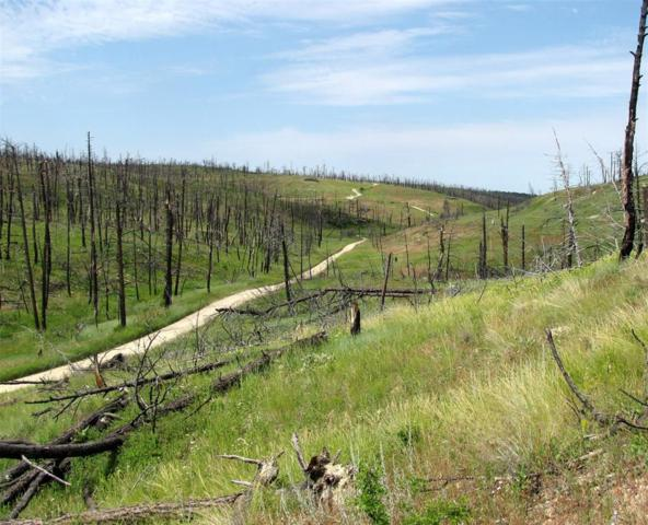 tbd Buckskin Road Ml-4, Roundup, MT 59072 (MLS #329802) :: Black Diamond Montana