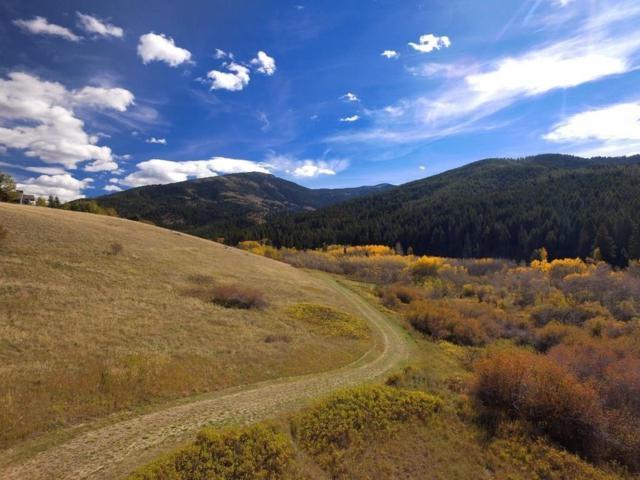 Lot 2 Limestone Meadows Lane, Bozeman, MT 59715 (MLS #330038) :: Black Diamond Montana