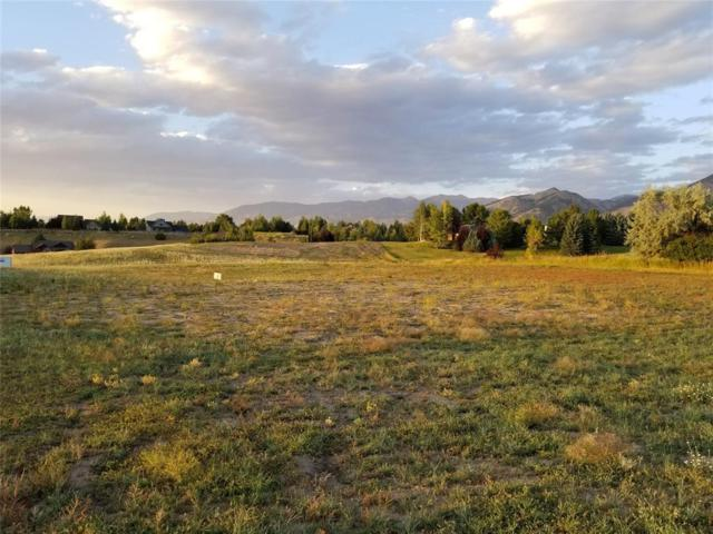 Lot 74 Springhill Reserve, Bozeman, MT 59715 (MLS #330627) :: Black Diamond Montana