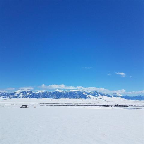 Lot 258 Virginia City Ranches, Ennis, MT 59729 (MLS #330905) :: Black Diamond Montana