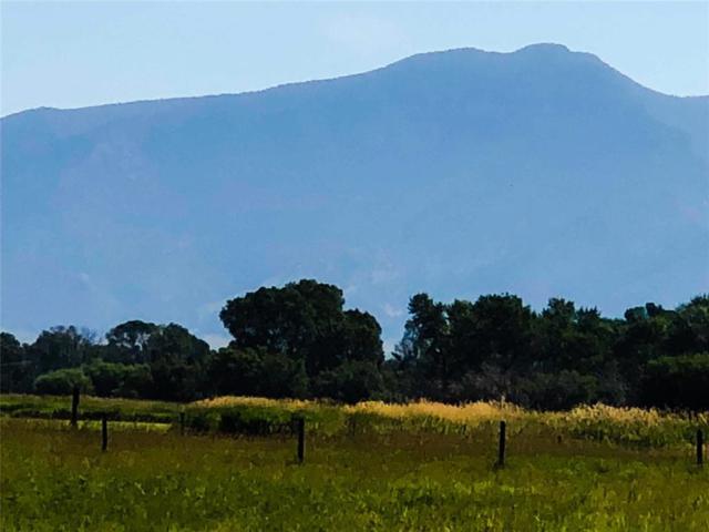 TBD Primrose Lane, Silver Star, MT 59751 (MLS #330987) :: Black Diamond Montana