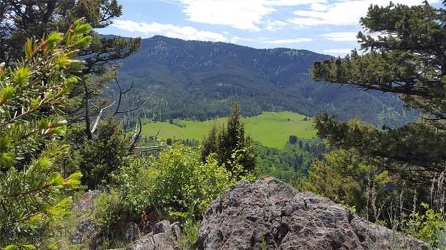 TBD Trail Creek Road, Bozeman, MT 59715 (MLS #331094) :: Hart Real Estate Solutions