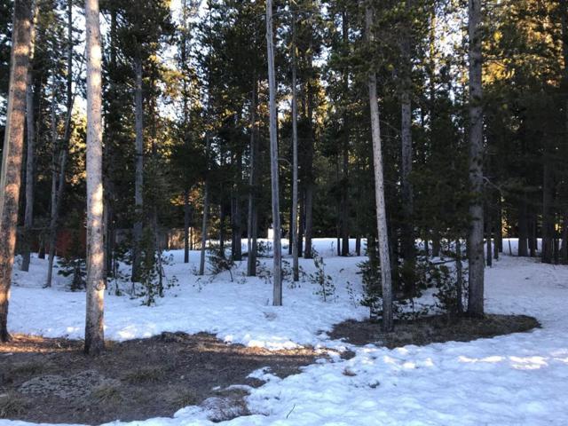 305 Lamar Avenue, West Yellowstone, MT 59758 (MLS #331605) :: Black Diamond Montana