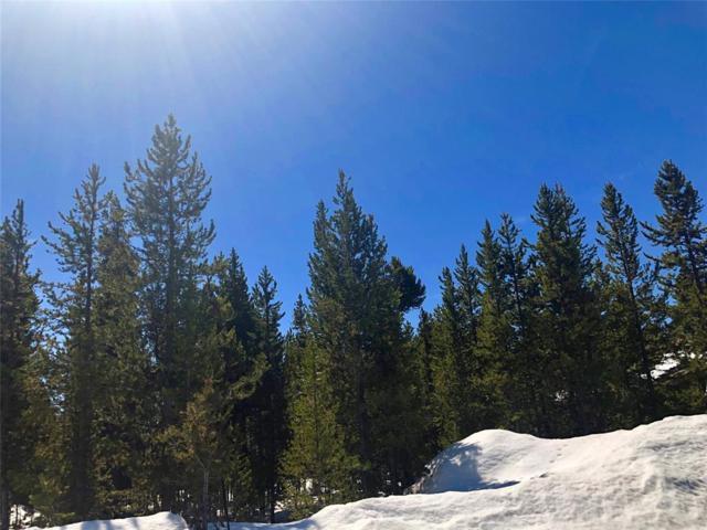 512 Grouse Avenue, West Yellowstone, MT 59758 (MLS #331705) :: Black Diamond Montana