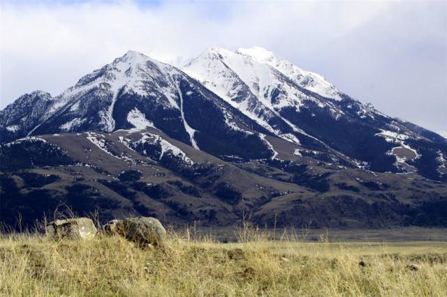 103 Capricorn Drive, Emigrant, MT 59027 (MLS #332000) :: Black Diamond Montana