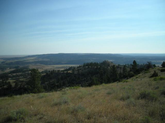 1 Cedar Coulee Hideaway, Reed Point, MT 59069 (MLS #332284) :: Black Diamond Montana