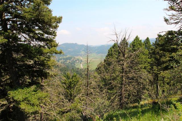 600 Bear Tracks Road, Bozeman, MT 59715 (MLS #332360) :: Hart Real Estate Solutions