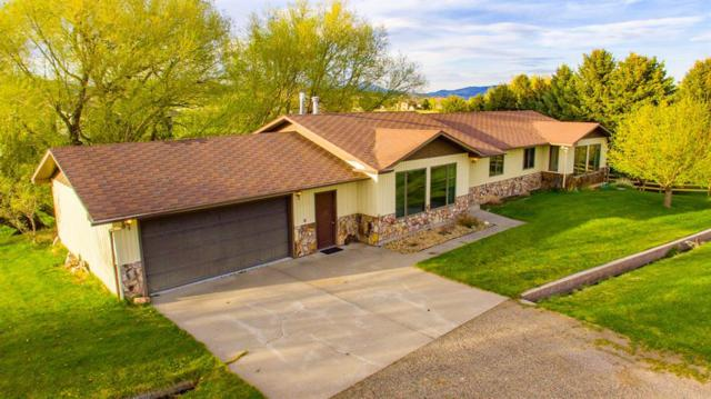 407 Arbor Drive, Livingston, MT 59047 (MLS #333683) :: Black Diamond Montana