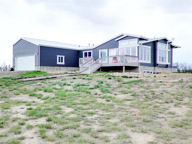 1165 Trout Creek Road, Dillon, MT 59725 (MLS #333740) :: Black Diamond Montana