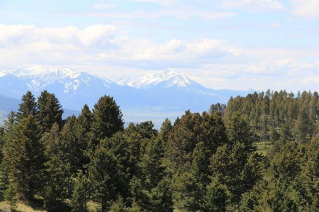 TBD Tbd Above Paradise Trail, Livingston, MT 59047 (MLS #334051) :: Black Diamond Montana