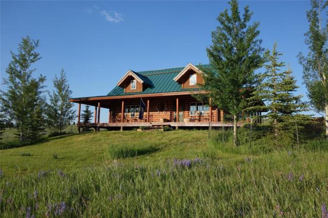 79 Echo Trail, Cameron, MT 59720 (MLS #334066) :: Black Diamond Montana