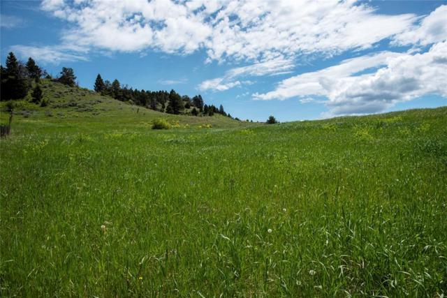 24 Quinn Creek Road, Livingston, MT 59047 (MLS #334258) :: Hart Real Estate Solutions