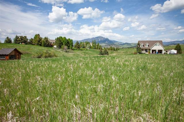 TBD Palette Court, Bozeman, MT 59715 (MLS #334321) :: Black Diamond Montana