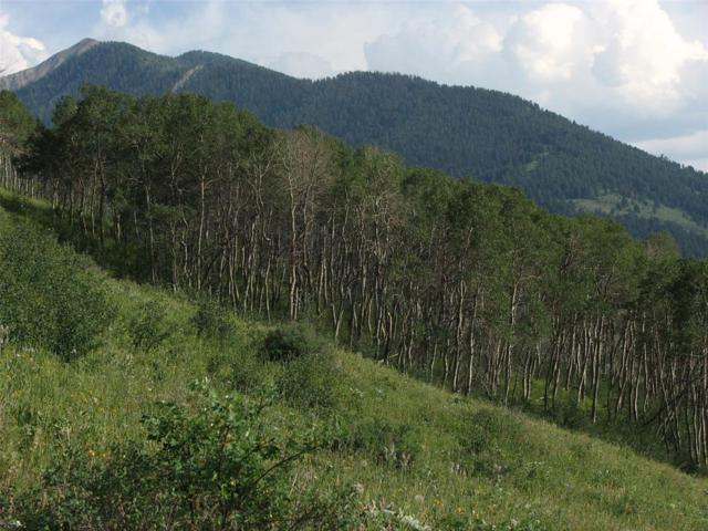 nhn N Slide Rock Road, Cameron, MT 59720 (MLS #334324) :: Black Diamond Montana