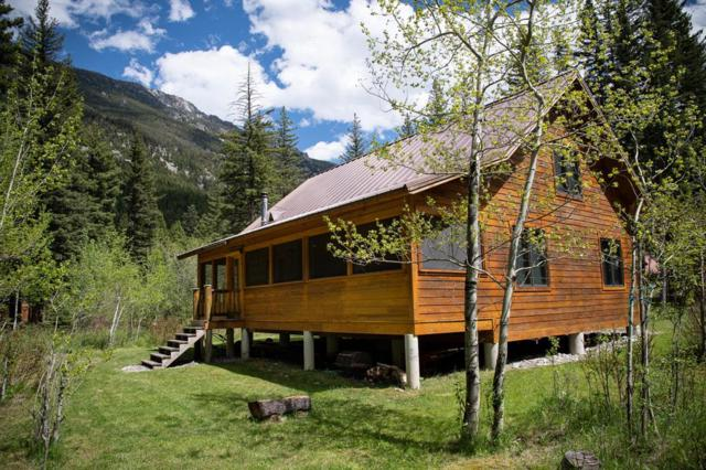 45 Ken Dan Lane, McLeod, MT 59052 (MLS #334613) :: Hart Real Estate Solutions