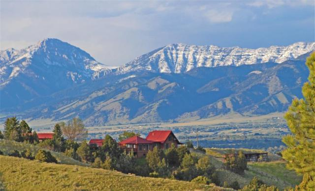 2715 Axtell Anceny Road, Bozeman, MT 59718 (MLS #334641) :: Black Diamond Montana