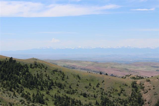 Lot 354 Pole Gulch, Three Forks, MT 59752 (MLS #334841) :: Black Diamond Montana