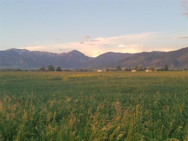 TBD Splendid View Drive, Belgrade, MT 59714 (MLS #335017) :: Hart Real Estate Solutions