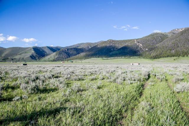 Parcels A47,A48,A56  Sportsmans Paradise, Cameron, MT 59720 (MLS #335029) :: Black Diamond Montana