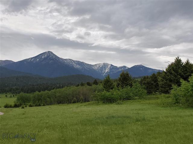 TBD Livingston Peak Road, Livingston, MT 59047 (MLS #335176) :: Black Diamond Montana