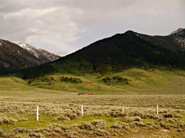 Lot 29-B Buffalo Lance Rd/Horn Creek Rd Road, Cameron, MT 59720 (MLS #335230) :: Black Diamond Montana