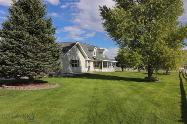 80 Cathy's Cove, Dillon, MT 59725 (MLS #335251) :: Montana Life Real Estate