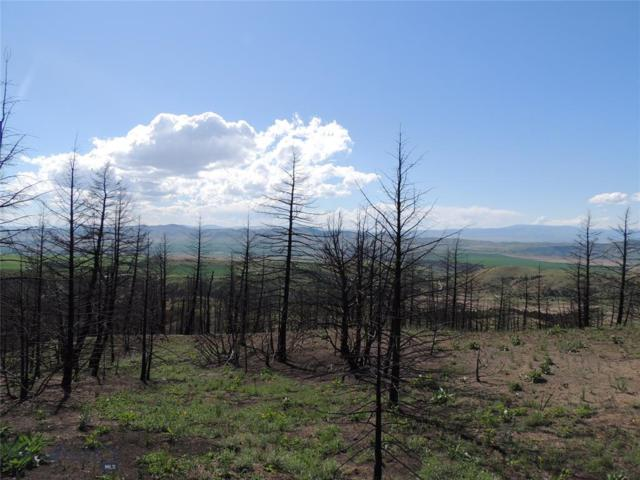 Lot 74 Pioneer Road, Three Forks, MT 59752 (MLS #335274) :: Black Diamond Montana