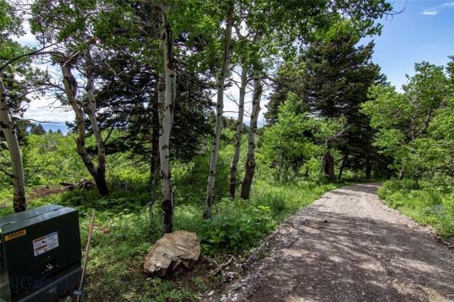 751 Resolute Ridge, Bozeman, MT 59715 (MLS #335582) :: Black Diamond Montana