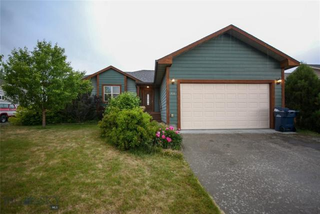 705 Northern Lights Road, Livingston, MT 59047 (MLS #335594) :: Hart Real Estate Solutions