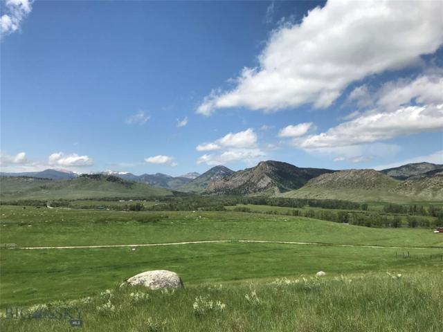 Lot 88 Spreading Winge Lane, Nye, MT 59061 (MLS #335636) :: Black Diamond Montana