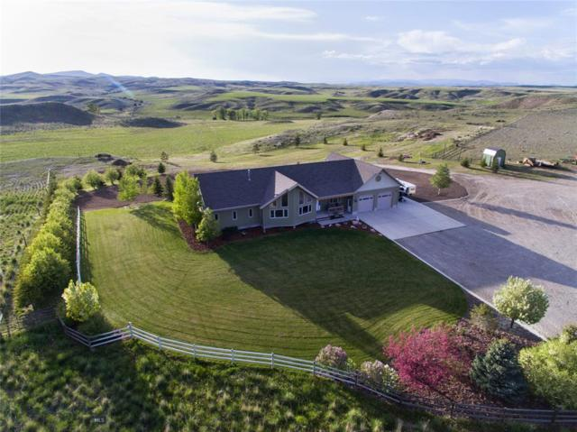 60 Shoddy Springs Road, Three Forks, MT 59752 (MLS #335657) :: Black Diamond Montana