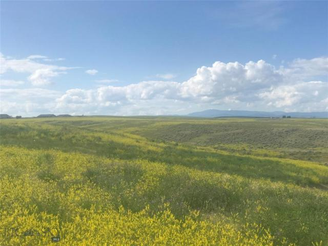 LOT 11,13 Morning Glory, Three Forks, MT 59752 (MLS #335673) :: Black Diamond Montana
