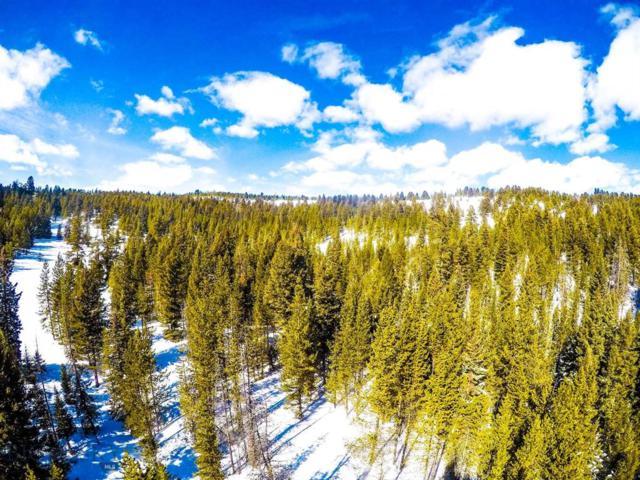 Ranch Lot 89, Big Sky, MT 59716 (MLS #335700) :: Hart Real Estate Solutions