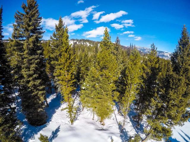 Ranch Lot 90, Big Sky, MT 59716 (MLS #335702) :: Hart Real Estate Solutions