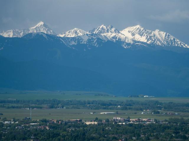 7850 Rolling Hills, Bozeman, MT 59715 (MLS #335726) :: Black Diamond Montana