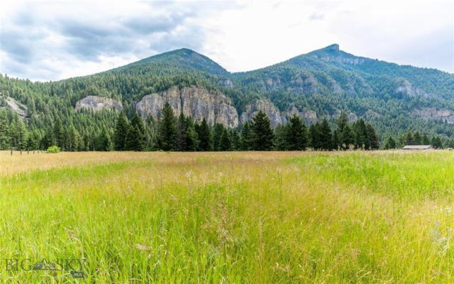 TBD Gallatin Road, Gallatin Gateway, MT 59730 (MLS #335748) :: Black Diamond Montana