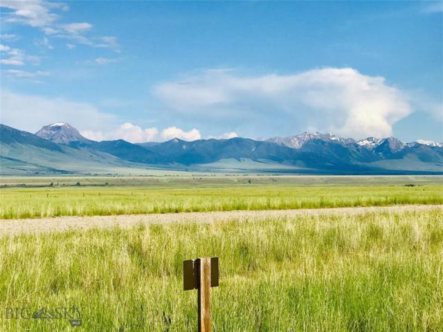 93 Montana Way, Ennis, MT 59729 (MLS #335805) :: Hart Real Estate Solutions