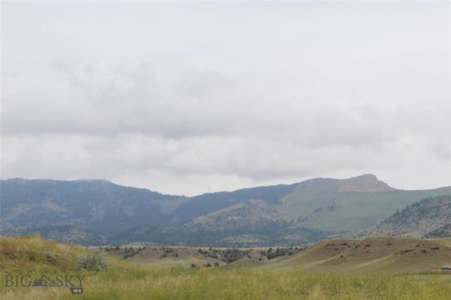 3 Prairie Dog Lane, Whitehall, MT 59759 (MLS #335910) :: Hart Real Estate Solutions