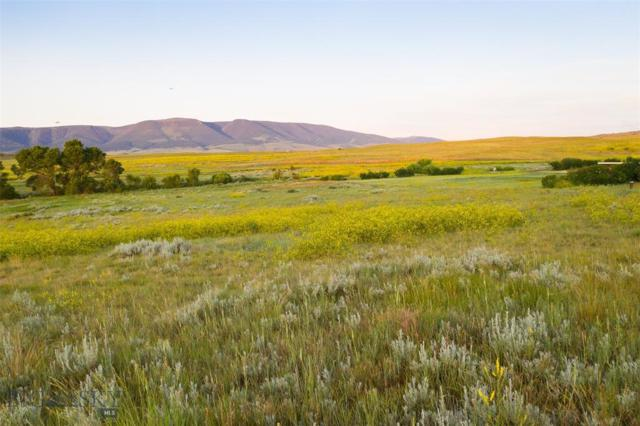 13 Shetland Drive, Livingston, MT 59047 (MLS #335985) :: Hart Real Estate Solutions