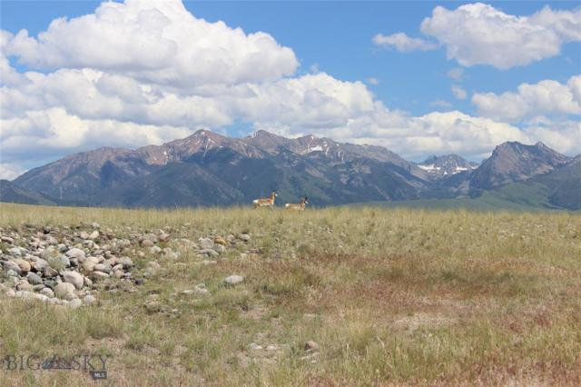 Lot 13 Sphinx Mountain Subdivision, Cameron, MT 59720 (MLS #337050) :: Hart Real Estate Solutions