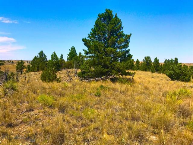 24 E Sunshine, Roundup, MT 59072 (MLS #337079) :: Black Diamond Montana