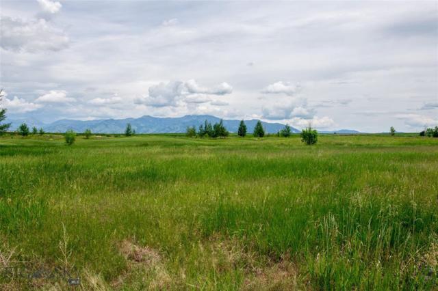 Lot 86 Black Bull Trail, Bozeman, MT 59718 (MLS #337082) :: Black Diamond Montana