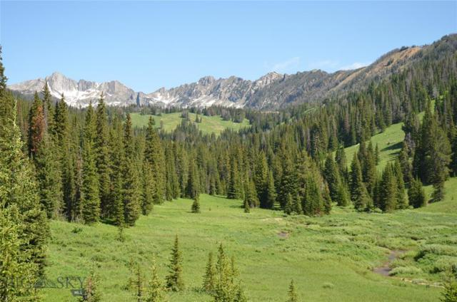 Lot 16 Beehive Basin Rd., Big Sky, MT 59716 (MLS #337297) :: Hart Real Estate Solutions