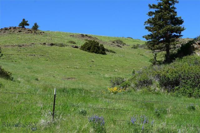TBD Cokedale Road, Livingston, MT 59047 (MLS #337597) :: Black Diamond Montana