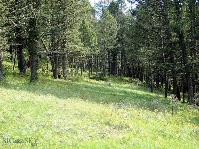 NHN Lot 1 Butler Hill, White Sulphur Springs, MT 59645 (MLS #339716) :: Hart Real Estate Solutions