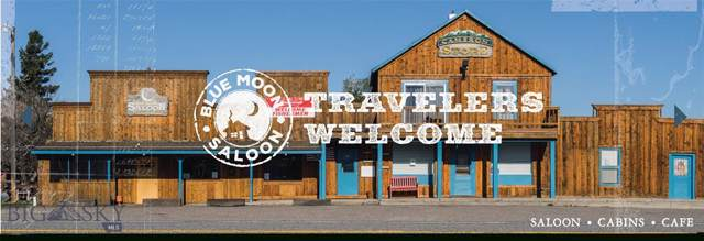 3793 Us Highway 287, Cameron, MT 59720 (MLS #339888) :: L&K Real Estate