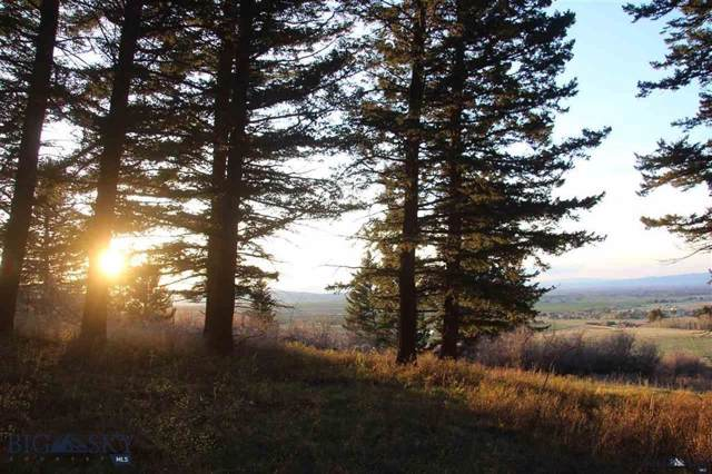Tract 2 Black Bear Road, Bozeman, MT 59718 (MLS #339930) :: Black Diamond Montana